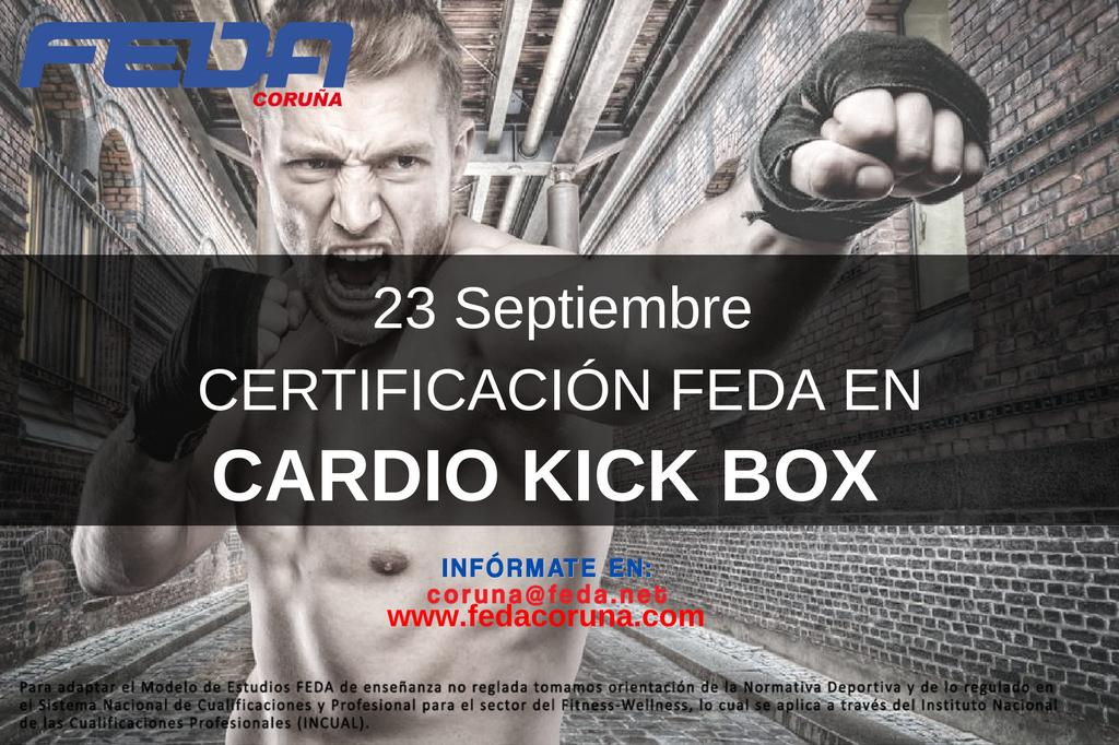 kick box 2309